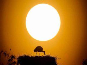 Nằm mơ thấy mặt trời có ý nghĩa gì? Đánh lô tô con gì?